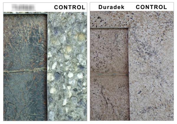 Comparing weathering testing results at 1820 MJ UV between Duradek and vinylTD.